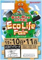 2011_EcoLife1-141x200